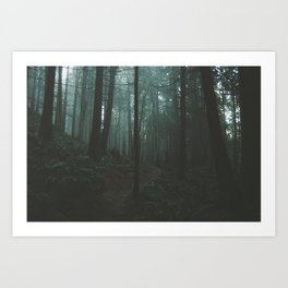 Chuckanut Mountain Art Print