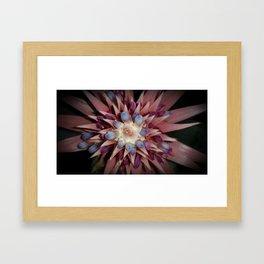 Bromeliad Flower Vignette Framed Art Print