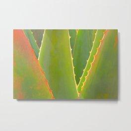 Agave Abstract Metal Print