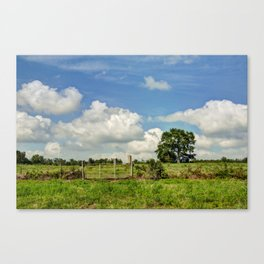 Country Hill Canvas Print