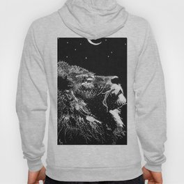 Lion and the Moon Hoody