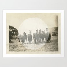 Band of Horses - White Art Print