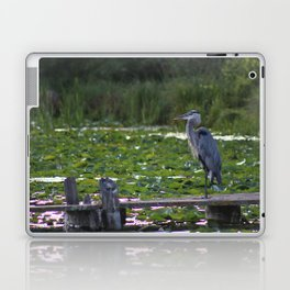 Heron on Deck Laptop & iPad Skin