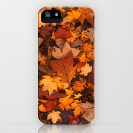 Autumn Fall Leaves iPhone Case