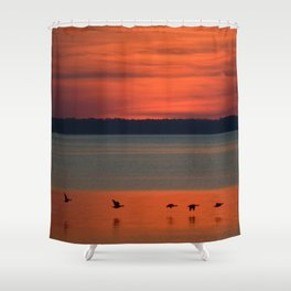 A flock of geese flying north across the calm evening waters of the bay Shower Curtain
