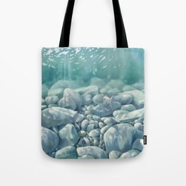 Vermont Stream Bed Tote Bag