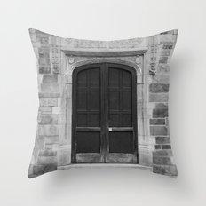 Ann Arbor Michigan Doors Throw Pillow