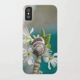 sea snail iPhone Case