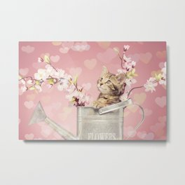 sweet kitty Metal Print