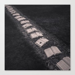 Book Path Canvas Print