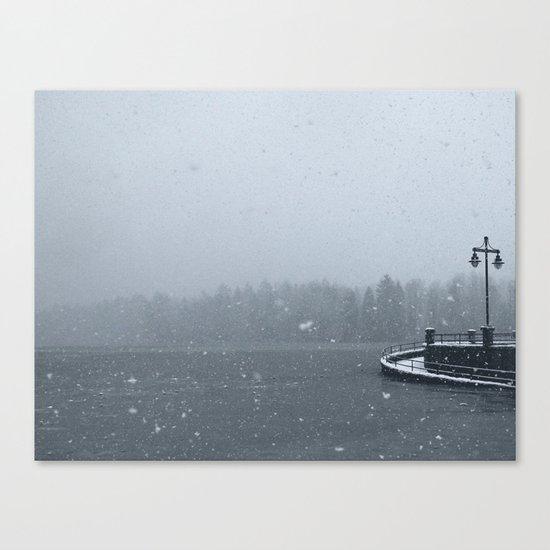 Unexpected Flurries Canvas Print