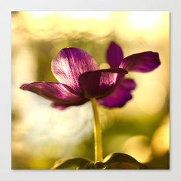 Glowing Purple Flower #decor #buyart #society6 Canvas Print