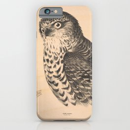 Vintage Print - Companion to Gould's Birds of Australia (1877) - Powerful Owl iPhone Case
