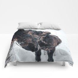 Icelandic Horses Comforters