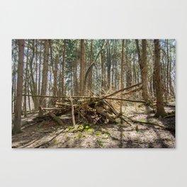Townsend Park Wooden Pile Canvas Print