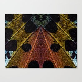 Butterflies Love Geometry Canvas Print