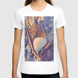 Old Metal, Stones & Shells T-shirt