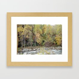 Calming Waters and Wilderness Framed Art Print