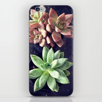 succulents iPhone & iPod Skins featuring Succulents  by Yellow Barn Studio