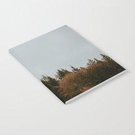 Wild Mountain Thyme Notebook