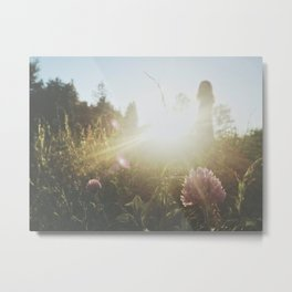 fields of whimsy Metal Print