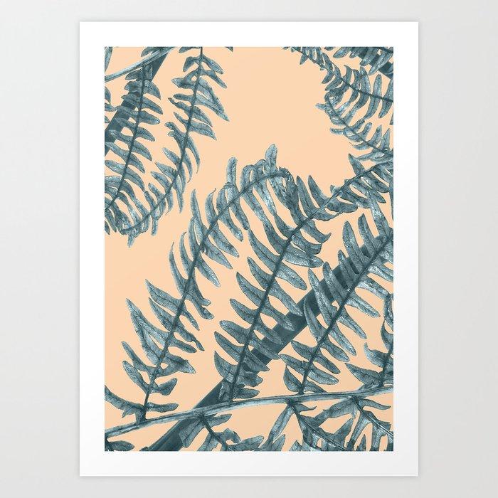 Silver Fern Art Print