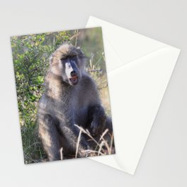 """Hey, whassup,"" said the Baboon Stationery Cards"