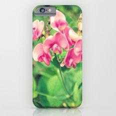 sweet pea Slim Case iPhone 6s
