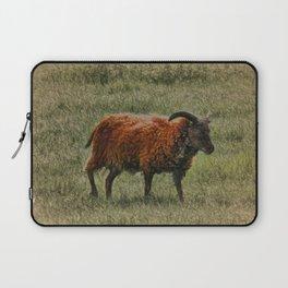 Soay Sheep Laptop Sleeve