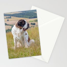 St Bernard with a view Stationery Cards