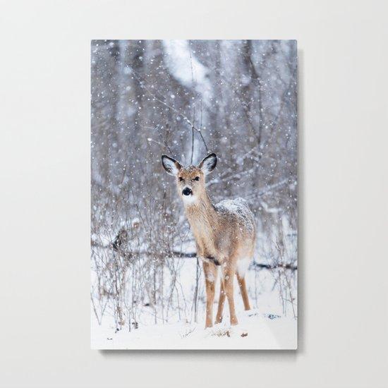 Bambi nature Metal Print