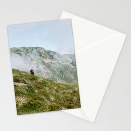 Hiker in the Pyrénées Stationery Cards