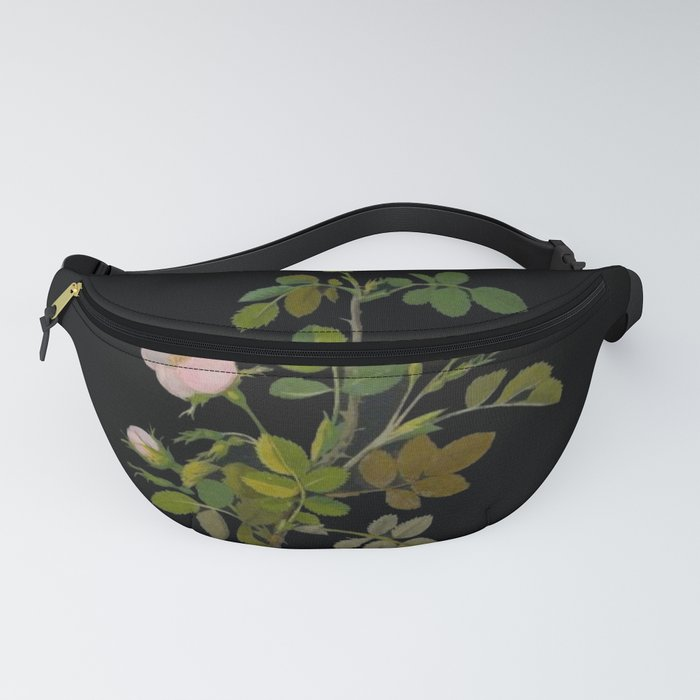 Rosa Canina Mary Delany Delicate Paper Flower Collage Black Background Floral Botanical Fanny Pack