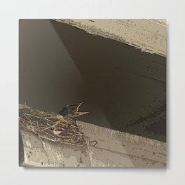 Baby Bird in Nest Metal Print