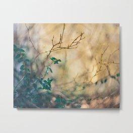 Jungle. Metal Print