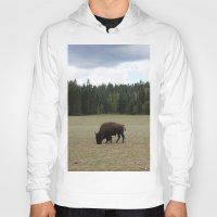 buffalo Hoodies featuring Buffalo  by Taylor Palmer