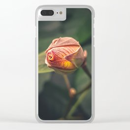 Nature's Fireplace Clear iPhone Case