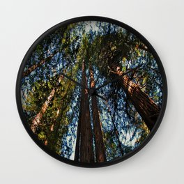 Muir Woods- horizontal Wall Clock