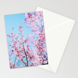Sakura 06 Stationery Cards