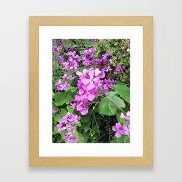 Flower Findings Framed Art Print