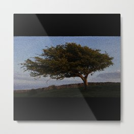 Lonely Tree - 222 Metal Print