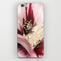 Wasp on flower 7 iPhone & iPod Skin