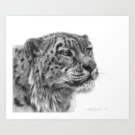 Snow Leopard G095 Art Print