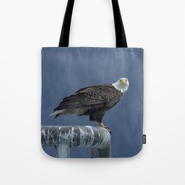 Bald Eagle of Resurrection Bay, No. 2 Tote Bag