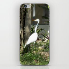 By your house iPhone Skin