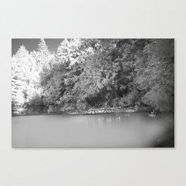NATURE IIII Canvas Print