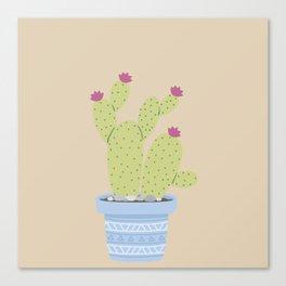 Suculents Cactus Plants Canvas Print