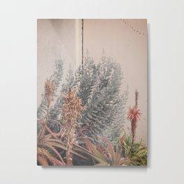 SM-Garden-Pink-Succulents Metal Print