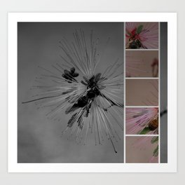Save the busy Bees! Art Print