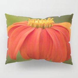 Mexican Sunflower Pillow Sham